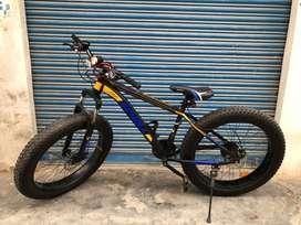 Scholl fat tyre bike