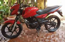 RED Pulsar 180DTSI in good condition.. modified with mono shock