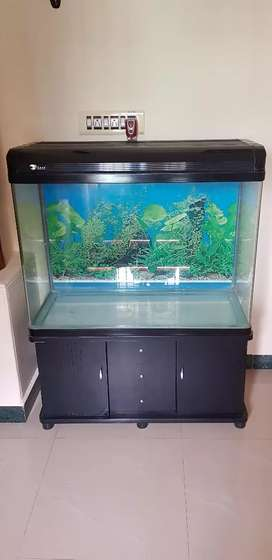 Imported Fish Tank from RS Electrical