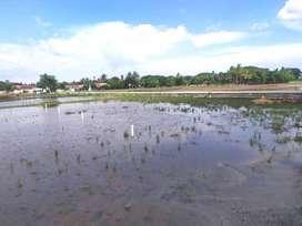 Tanah Kavling over kredit Di Jarakosta cikarang bekasi