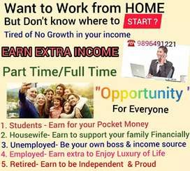 Work for students, job or retired person, housewifes