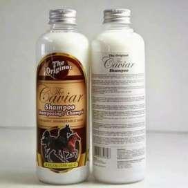 Shampoo Caviar (Banjarmasin)