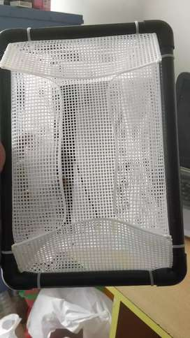 Cage for fish