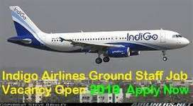 Indigo Airlines Hiring Part Time or Full Time Girls and Boys for Groun