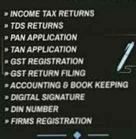 Tax filings  , gst incorporation,gst returns.
