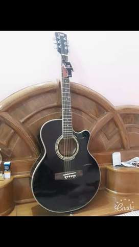 Acoustic Guitar (New condition)