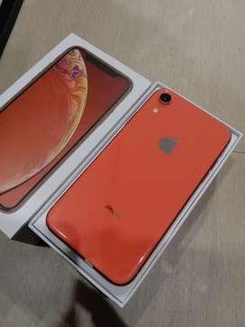 IPhone, IPhone XR Corall 64GB Fullset !!!