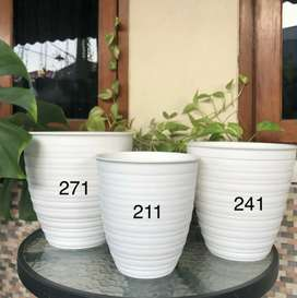 Pot tawon tirus 21