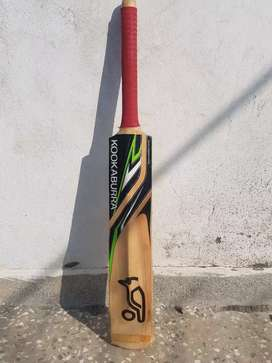 Original kookaburra bat