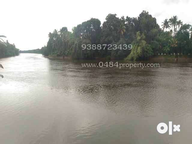 26 cent waterfront land at angamaly