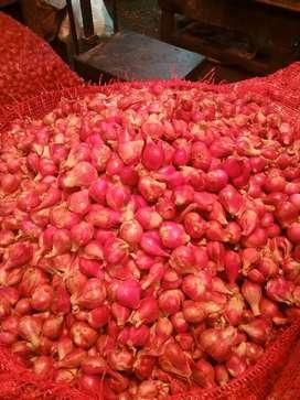 Bawang merah murah meriah