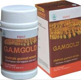 GAMGOLD kapsul ekstrak gamat emas