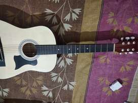 Guitar 5 month's old