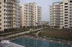 cheapest flats for sale in jalandhar heights.