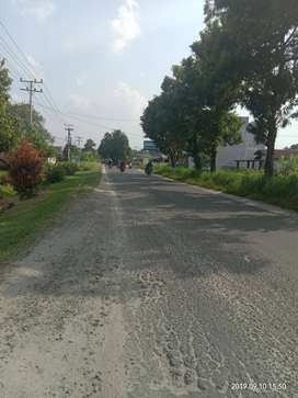 Lahan pertapakan rumah pinggir jalan raya bebas banjir