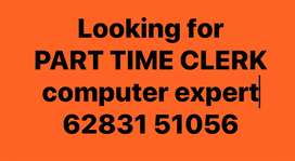 PART TIME COMPUETR JOB
