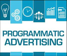 Programmatic Advertising Masterclass(1 hour White Board Session)