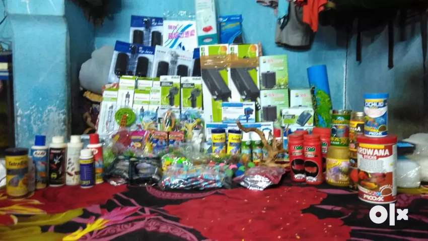 Dry stuffs and food available of aquarium 0
