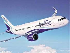 Description  Urgent hiring for indigo airlines -Indigo Airlines Job  D
