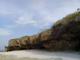 Dijual murah Tanah Loss pantai Kawona Kadipala Sumba Barat Daya NTT