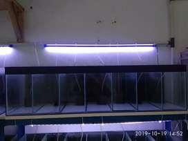 Aquarium 120.30.30 (sekat 7)