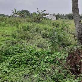 Investasi Tanah Kavling Harga Sangat Murah Di Cibitung