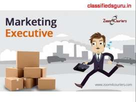 Required marketing Executives For Manufacturing Company