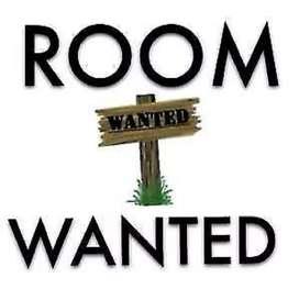 Urgent Room Required