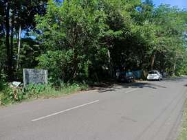 17 cent orginal land  at paravur town near vazhikulangara just 100 mtr