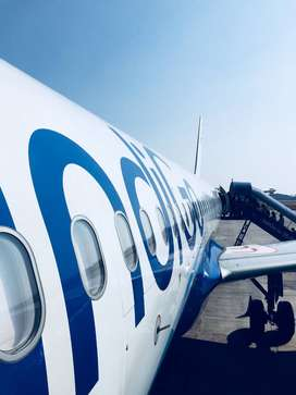 indiGo airlines airport jobs apply fast