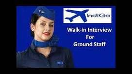 Walking Interview Air hostess Flight Loader Cargo Loader Driver