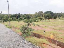 DC Converstion Sites in Tumkur road with Special offer 2300/- per sqft