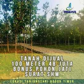 Dijual Tanah Kavling Murah 48jutaan/100m² Bonus Pohon Jati