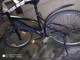 Between cycle