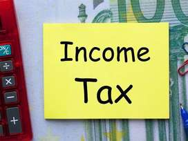 Income Tax @ Rs.1,500/- Business Return Filing
