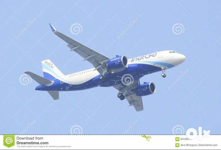 INDIGO JOBS APPLY NOW !!! JOB OFFER BY INDIGO AIRLINES HIGH PAID SALAR 0