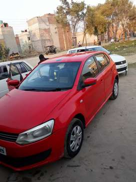 polo cae red color