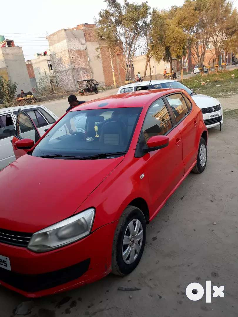 polo cae red color 0