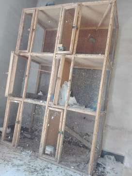 6 portion wood cage for sale