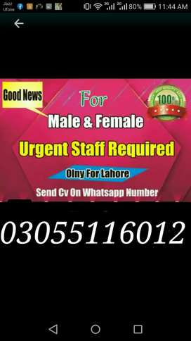 Online marketing  Male female required.