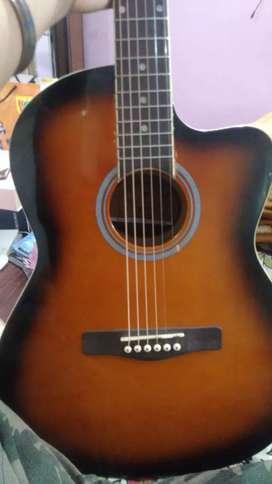 Guitar  13