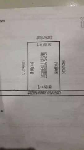 Jual tanah perkebunan L : 40 M, P : 290 M, luas 11.600 m².