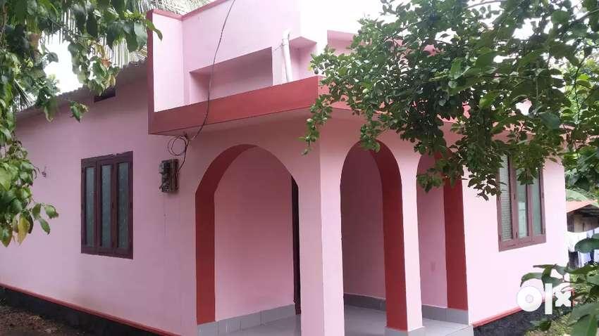 പായിപ്പാട്  7 സെന്റ് സ്ഥലവും വീടും വിൽപ്പനയ്ക്ക് 0