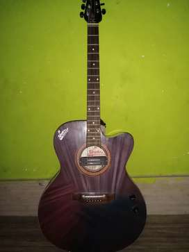 Signature semi electric guiter