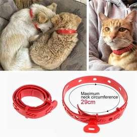 Kalung anti penangkal  kutu pinjal kucing dan anjing ras kecil
