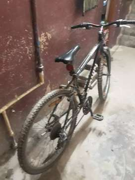 Bicycle with gears