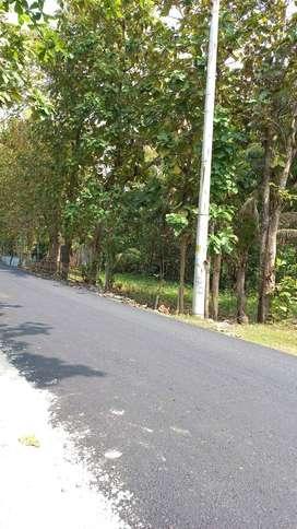 UTARA WAROENG TEDOEH Tanah Luas 300m SD Negeri Sambikerep JK8401
