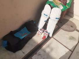 Cricket kit with SS cricket pad and cricket gloves