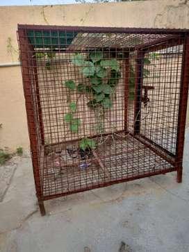 Dog House (Made of iron)