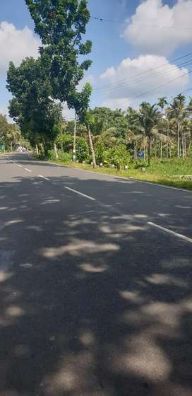 16 cent Square commercial plot for sale.Near SP office pathanamthitta